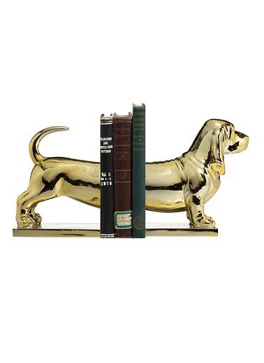 Altın Köpek Kitap Düzenleyicisi-Warm Design